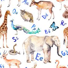 Alphabet Letters, Wild Animals, Birds. Childish Seamless Pattern. Zoo Watercolor