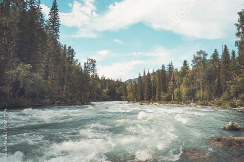Photo Stands Forest river The fast flowing crystal clear waters of the River during early spring run. Mountain river flows in the forest. Beautiful wildlife landscape