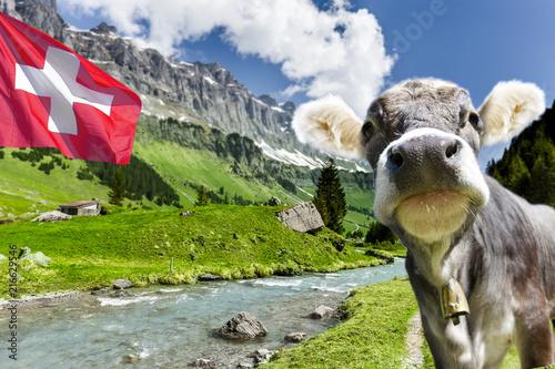 Foto op Plexiglas Europa Schweizer Berge
