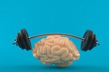 Brain Training Concept
