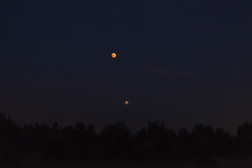 Naklejka Night sky over forest, visible full eclispse of Moon, Mars in perigee