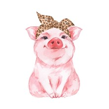 Funny Pig Wearing Leopard Band...
