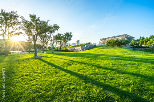Staande foto Pistache city skyline with green lawn in urban