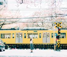 桜と女性と電車