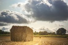 A Bale Of Wheat Straw In A Fie...