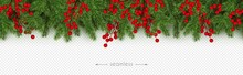Christmas, New Year Seamless Border Realistic Branches Of Christmas Tree And Holly Berries Vector