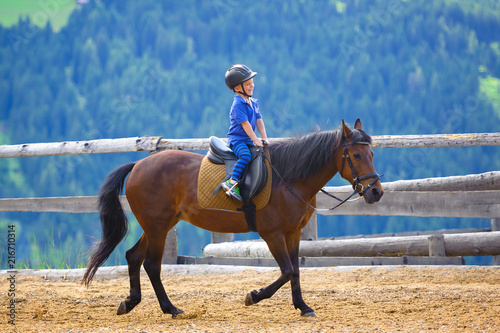 Photo Stands Horseback riding Jung Pferde