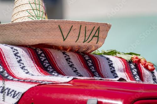 Fotografie, Obraz  Viva Sombrero