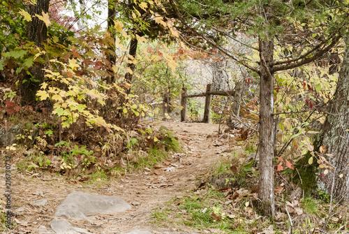 Keuken foto achterwand Verenigde Staten Curving path near Chapman Falls