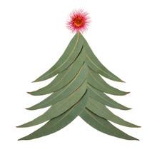 An Aussie Christmas Tree Made ...