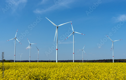 Zdjęcie XXL Elektrownie wiatrowe w polu kwitnący rzepak oleisty widziany w Niemczech wiejskich