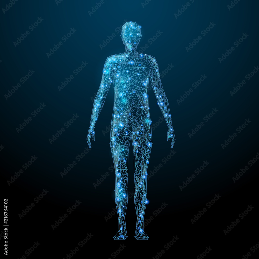 Fototapeta Human body low poly wireframe. Vector polygonal image in the form of a starry sky or space, consisting of points, lines, and shapes in the form of stars with destruct shapes.