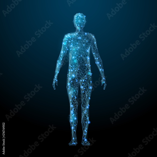 Human body low poly wireframe Fototapeta