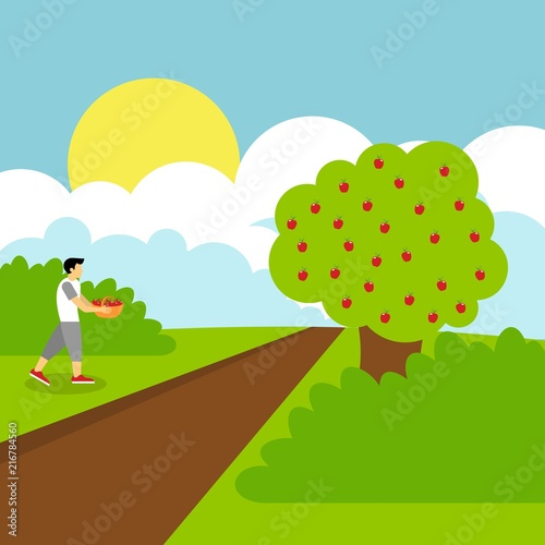 Keuken foto achterwand Lime groen Picking apple fruit illustration