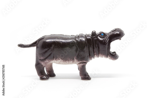 hippo model isolated on white background, animal toys plastic