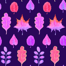 Colorful Autumn Leaves Variety (different Shapes), Hand Painted Watercolor Illustration In Soft Purple Pink Palette, Seamless Pattern On Dark Blue Background