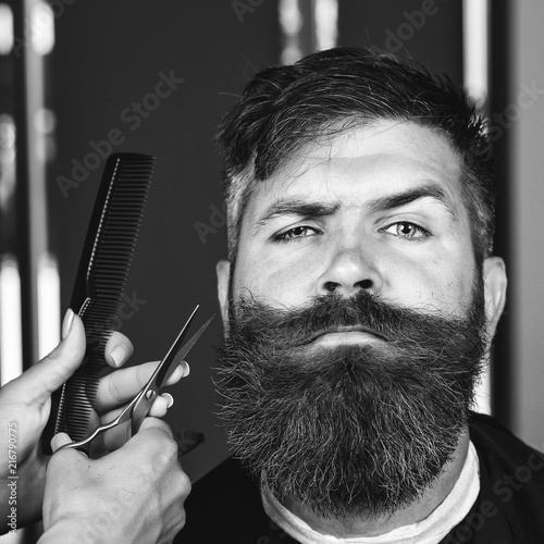 Hairstylist serving client at barber shop. Bearded man, bearded male. Portrait of stylish man beard. Barber scissors and straight comb, barber shop. Vintage barbershop, shaving. Black and white.