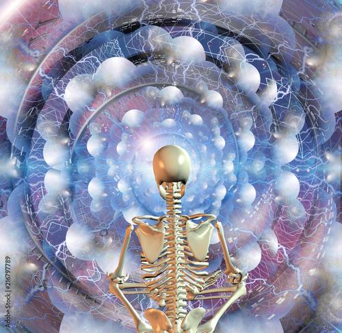 Fotografie, Obraz  Zen Skeleton