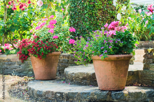 Foto op Canvas Madeliefjes Beautiful backyard garden full of colorful flowers in pots and containers, selective focus