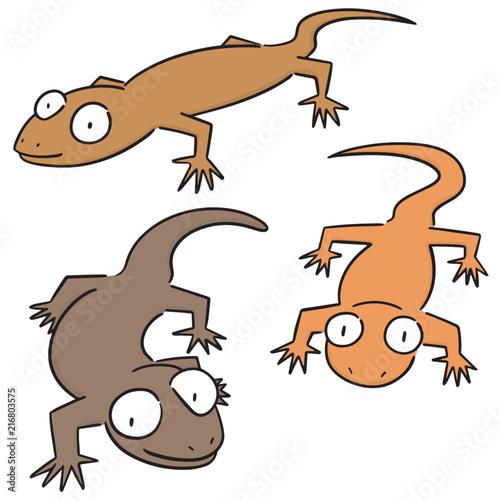 Fotografie, Obraz vector set of lizards