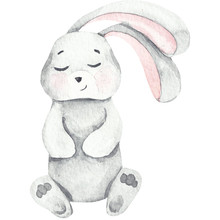 Watercolor Baby Bunny Love, Wh...