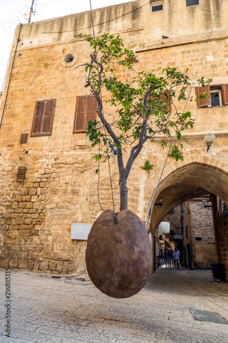 Fotobehang Midden Oosten Suspended Orange Tree in Yafo, Israel