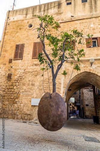 Staande foto Midden Oosten Suspended Orange Tree in Yafo, Israel
