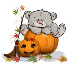 Teddy Bear Climbed On A Huge H...
