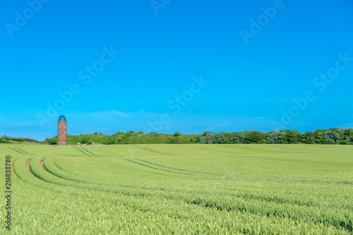 Foto op Canvas Blauw Landscape with cornfield and former Marinepeilturm tower at Cape Arkona
