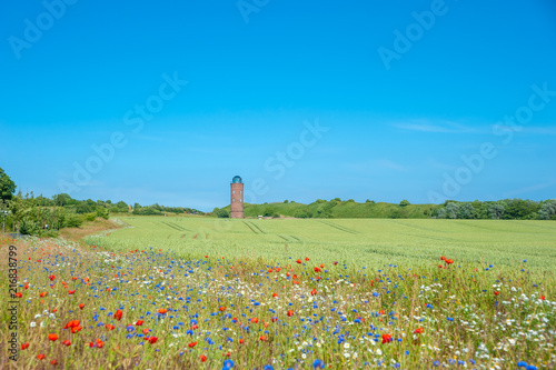 Foto op Aluminium Blauw Landscape with cornfield and former Marinepeilturm tower at Cape Arkona