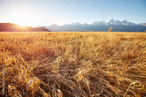 Keuken foto achterwand Centraal-Amerika Landen Golden sunrise at the Grand Teton National Park, Wyoming, USA.