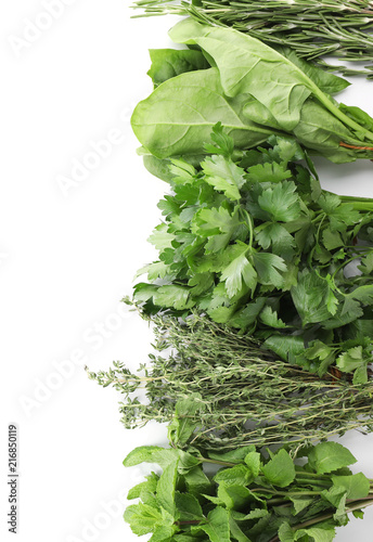 Composition with fresh green herbs on white background
