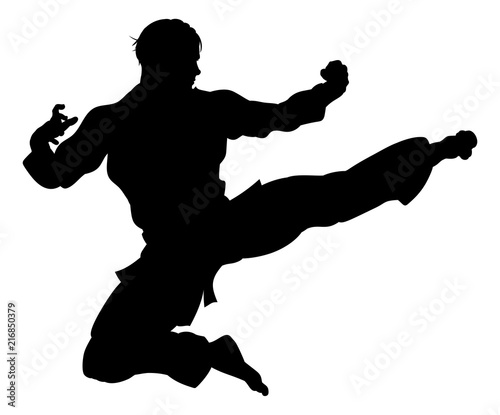 Karate or Kung Fu Flying Kick Silhouette Canvas-taulu