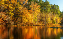 Lake At Umstead State Park In ...