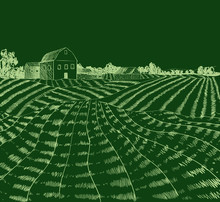 Vector Hand Drawn Farm Field, ...