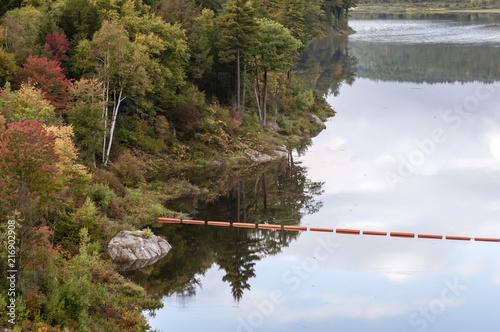 Keuken foto achterwand Verenigde Staten Trees along shore of Otter Brook Lake