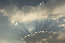 Sun's Rays In Early Morning;  ...
