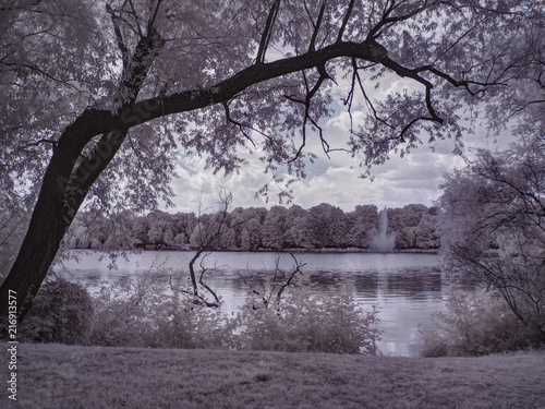 Foto op Aluminium Aubergine infrared photography - ir photo of landscape with tree under sky with clouds - the art of our world and plants in the infrared camera spectrum