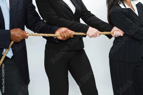 Fotografie, Obraz  Business Concept Battling. Tug of War.