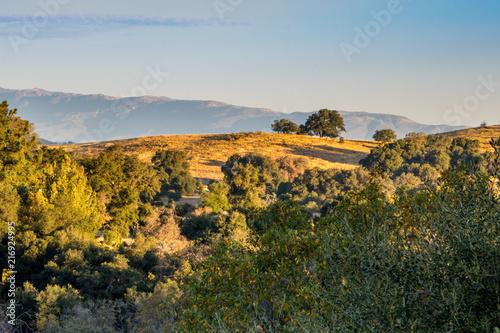 Fototapeta Autumn, fall landscape, native plants in southern California obraz