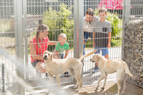 Staande foto Hoogte schaal Family getting to know two dogs in animal shelter