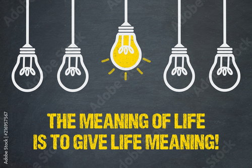 The meaning of life is to give life meaning! Canvas Print