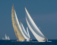 French Riviera - Old Sail Race In Cannes