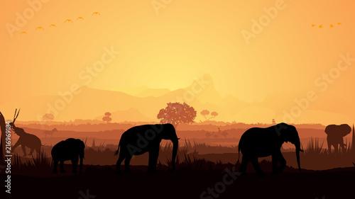 Foto op Aluminium Koraal Wild animals silhouette