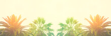 Banner Palm Leaves Against The Sky Tropical Background Bright Sunny Colors Vintage Retro Toning