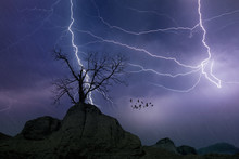 Powerful Lightnings In Dark Stormy Sky, Weather Forecast Concept