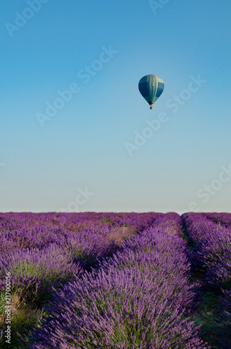 Spoed Foto op Canvas Lavendel Plateau de Valensole 2018