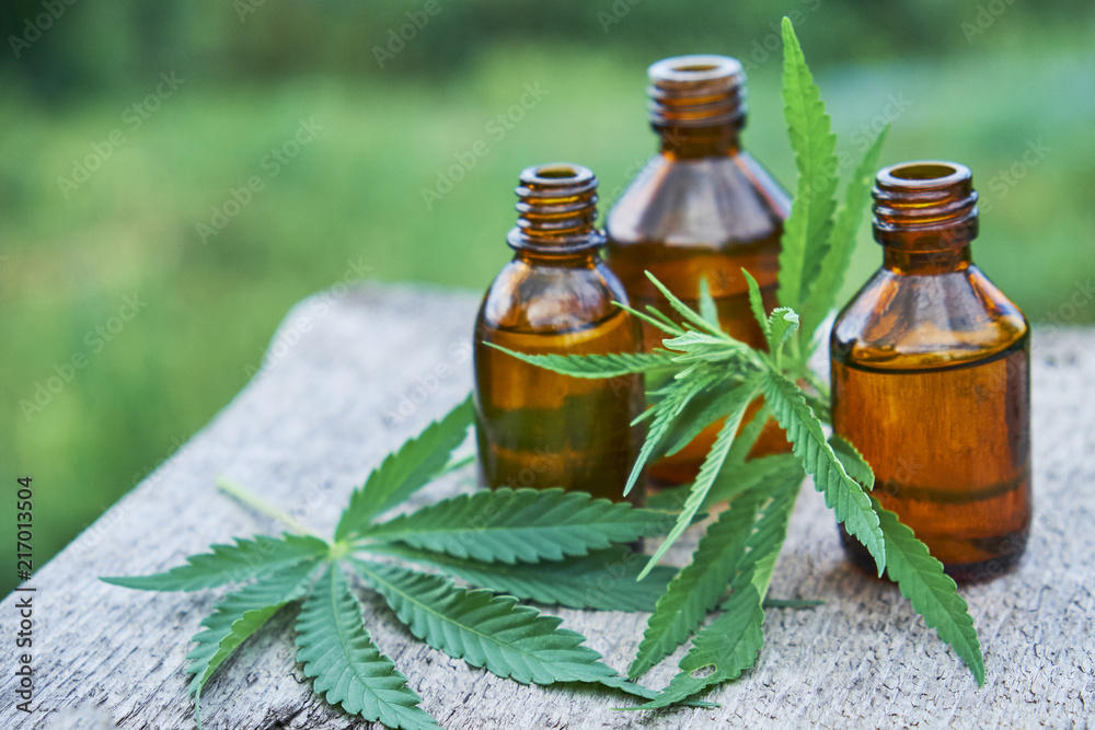 Fototapeta hemp leaves on wooden background, seeds, cannabis oil extracts in jars.