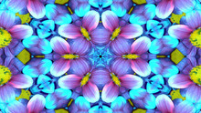 Flowers Flora Kaleidoscope