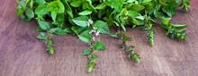 Fresh Green Organic Mint Leaf On Wooden Table.